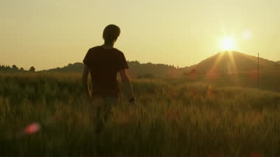 stock-footage-young-man-walking-and-raising-hands-in-the-wheat-field-at-sunset-time